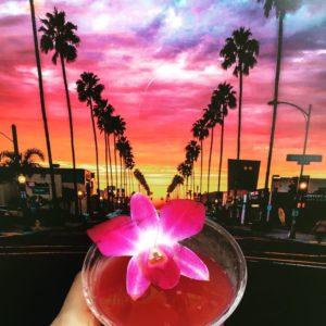 Newport Avenue Ocean Beach San Diego